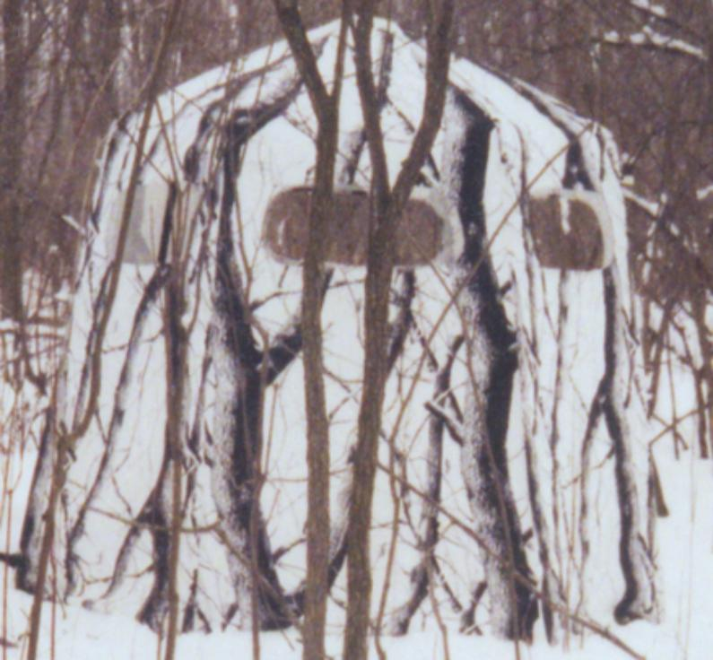 A Whitetail Hunters Treestands Amp Ground Blinds